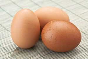 Australorp Chicken Eggs